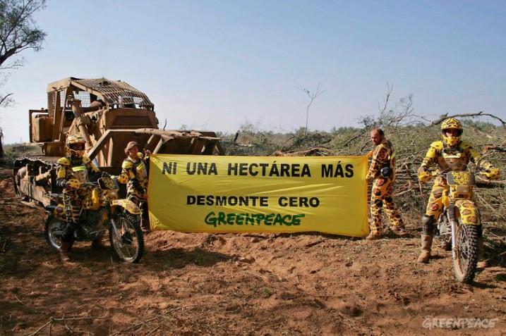 """Jaguares de Greenpeace bloquean tres topadoras en la finca """"Las"""