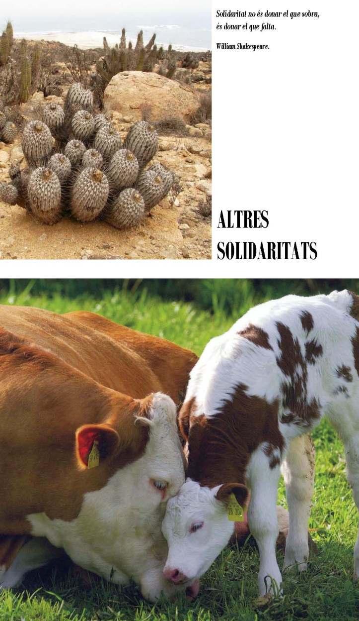 LA SOLIDARITAT... Nº 3 Altres solidaritats..._Página_03