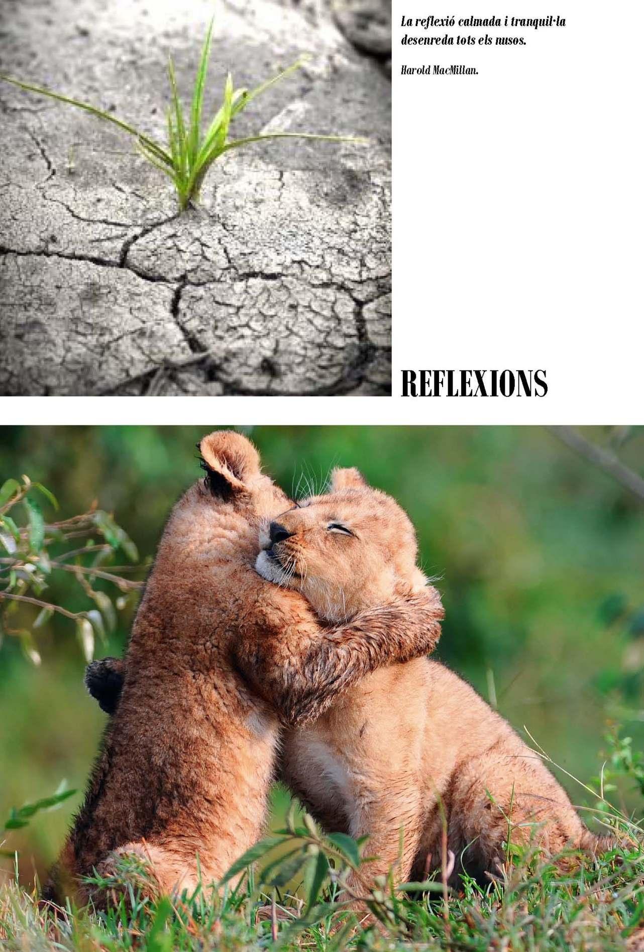 LA SOLIDARITAT... Nº 6 Reflexions..._Página_03