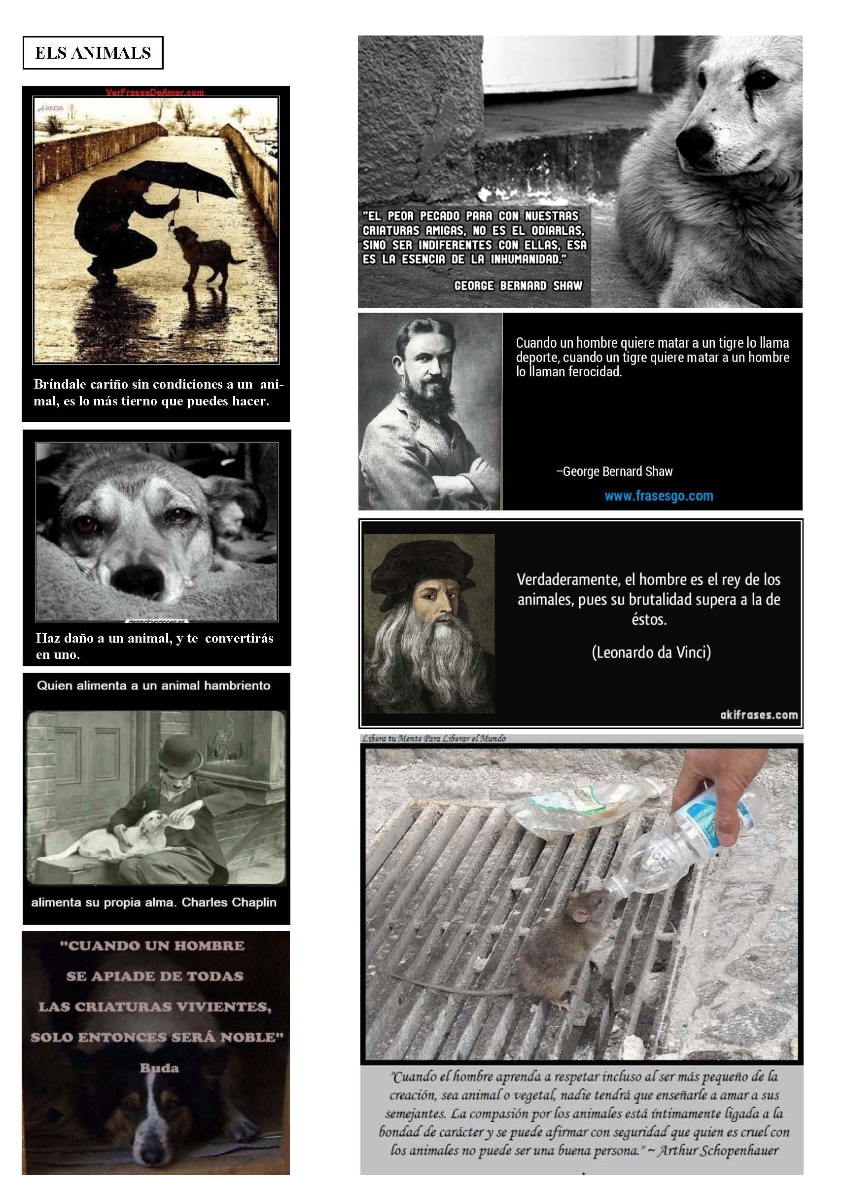 LA SOLIDARITAT... Nº 6 Reflexions..._Página_50